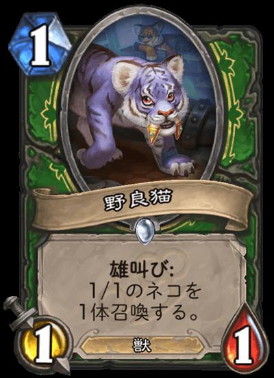野良猫.png
