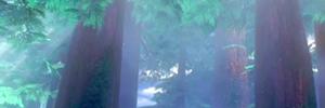 森の国スチームガーデン