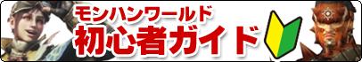 初心者ガイド.png