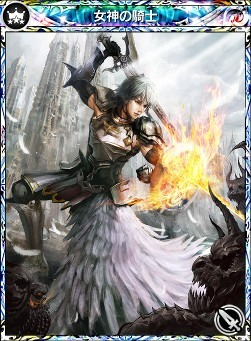 女神の騎士.jpg