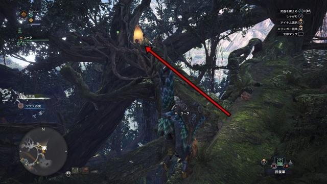 MHW 古代樹の森キャンプ跡地17-2.jpg