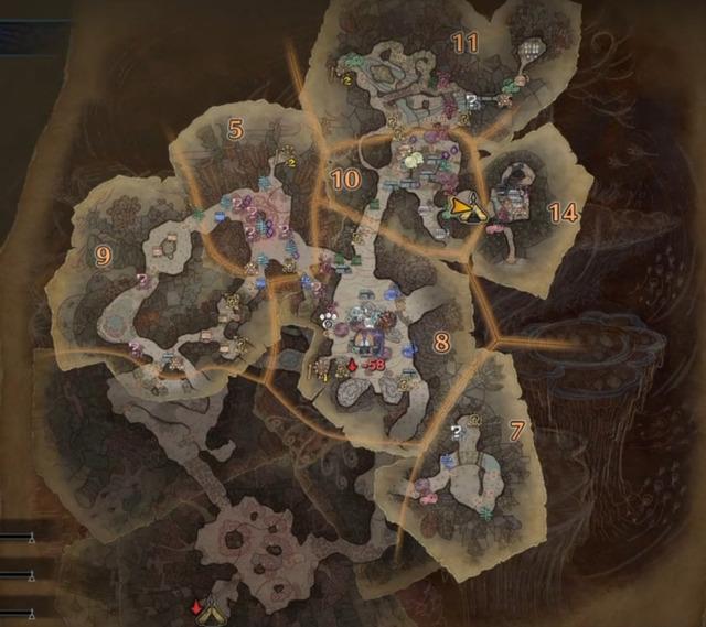 陸珊瑚の台地(中層)_エリア5.7.8.9.10.11.14