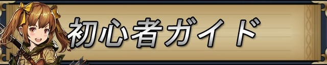 初心者ガイド.jpg