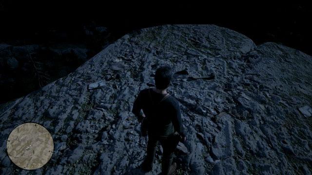 ベリルズドリームの高台の化石
