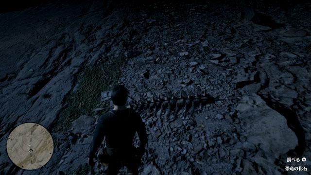 岩だらけの斜面の化石