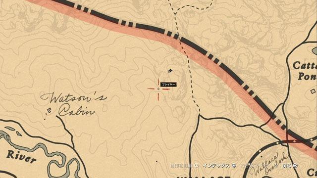 北の洞窟の化石場所