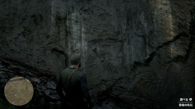 断崖の化石