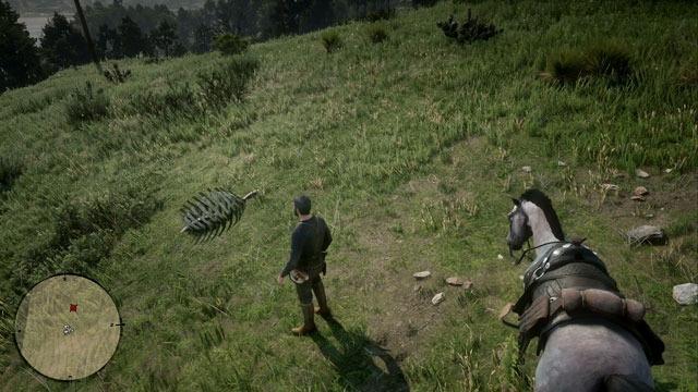 草に覆われた丘の化石