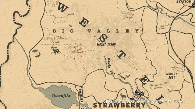 ベリルズドリームの高台の化石の場所