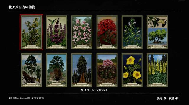 北アメリカの植物