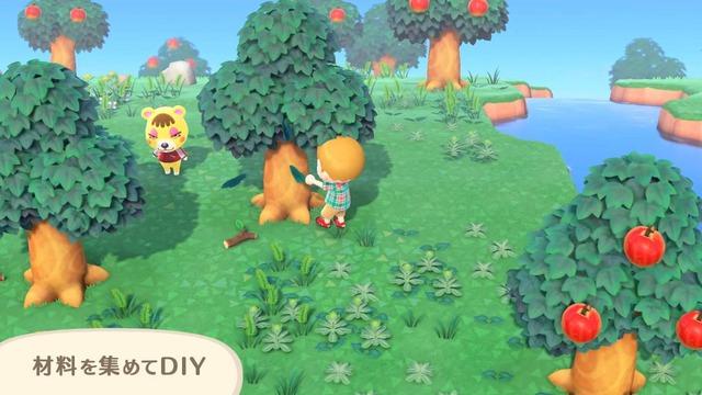 島の各所にある木をゆらすことで入手することができます。