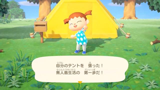 テントの設置3