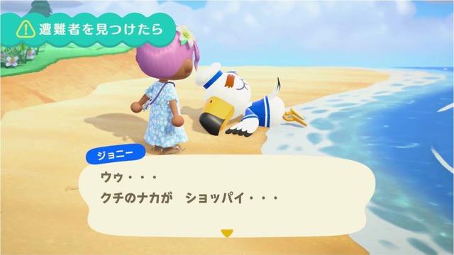 ジョニーは、稀に島の浜辺で倒れている特殊な訪問者です。倒れているジョニーは、何度か話しかけてあげることで起こすことができ、会話を進めると「つうしんそうちのパーツ」を探すことを依頼されます。この依頼を達成すると後日にポストにプレゼント付の手紙をもらうことができます。