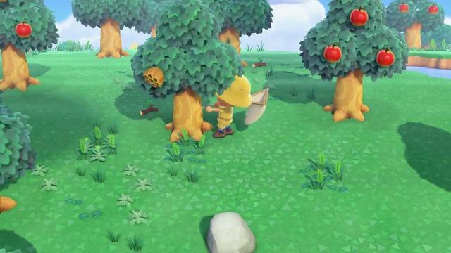 木をゆすることで時々「ハチのす」が木から落ち、ハチが出現します。