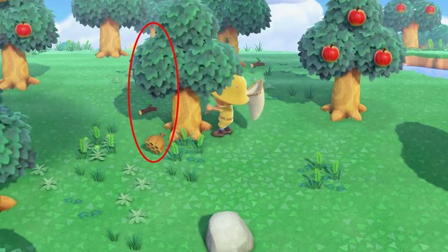 画像の位置でゆらした場合、赤で囲っている場所からハチが出現します。