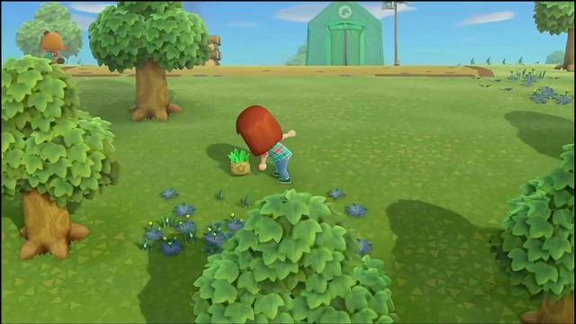 雑草を見つけ次第抜いておきましょう。雑草は、買い取ってもらってお金にしたり、DIYに利用したりしましょう。また、たぬきマイレージ「草むしりボランティア」では、買い取ってもらった雑草の数に応じてマイルをもらうことができます。