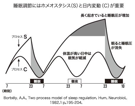 睡眠調整にはホメオスタシスと日内変動が重要なことを表す図