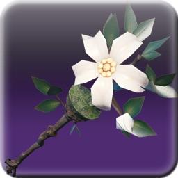 世界樹の杖
